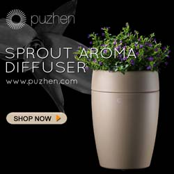 Puzhen Sprout Aroma Diffuser